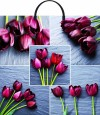 Коллаж тюльпаны