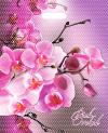 Орхидея розовая